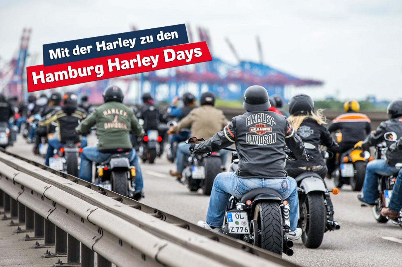 Großartig Harley Rahmen Mit Titel Bilder - Benutzerdefinierte ...