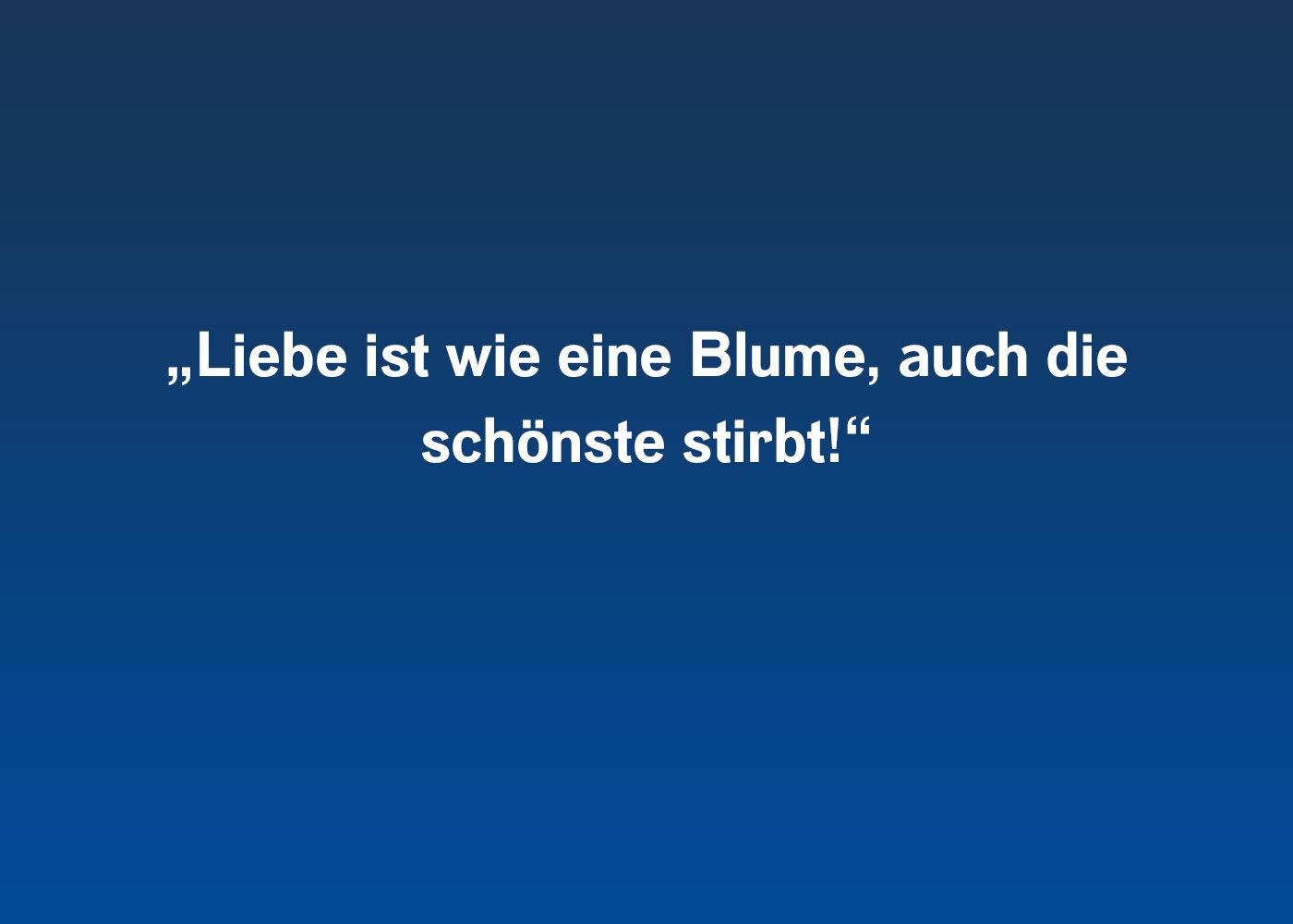 Rammstein zitate