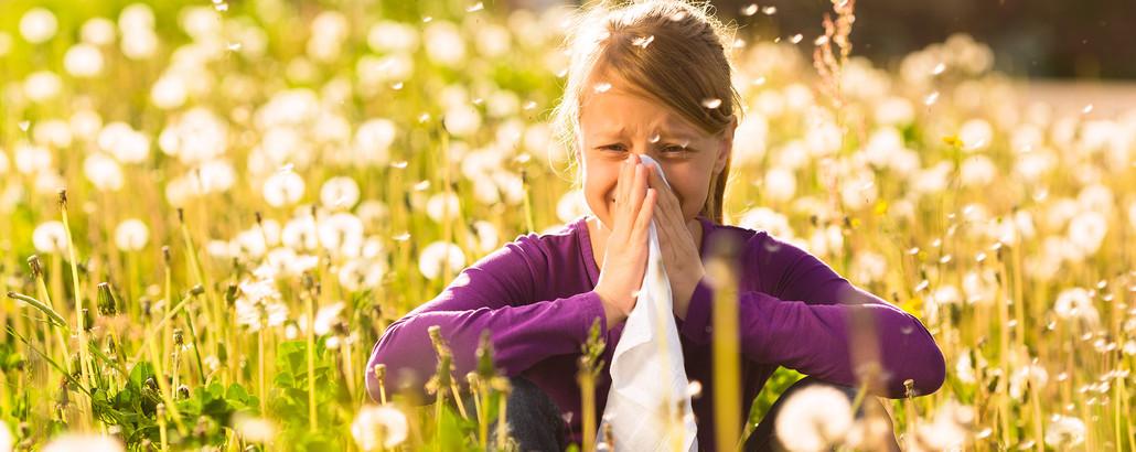 Pollenbelastung in Bayern